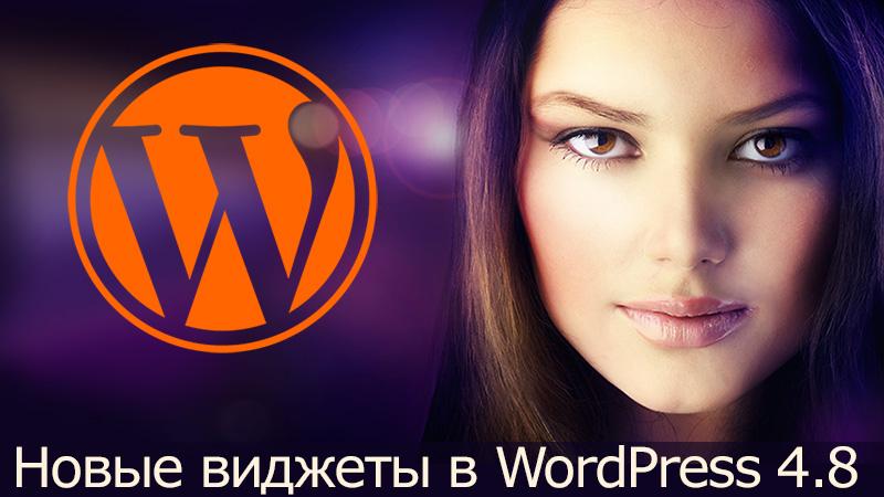 Новые виджеты в WordPress 4.8