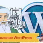 Руководство по обновлению блога до WordPress 5.0.. Обновление.