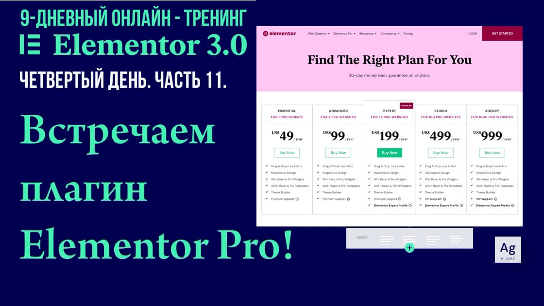 Как приобрести плагин Elemenor Pro, установить на сайт и активировать лицензию