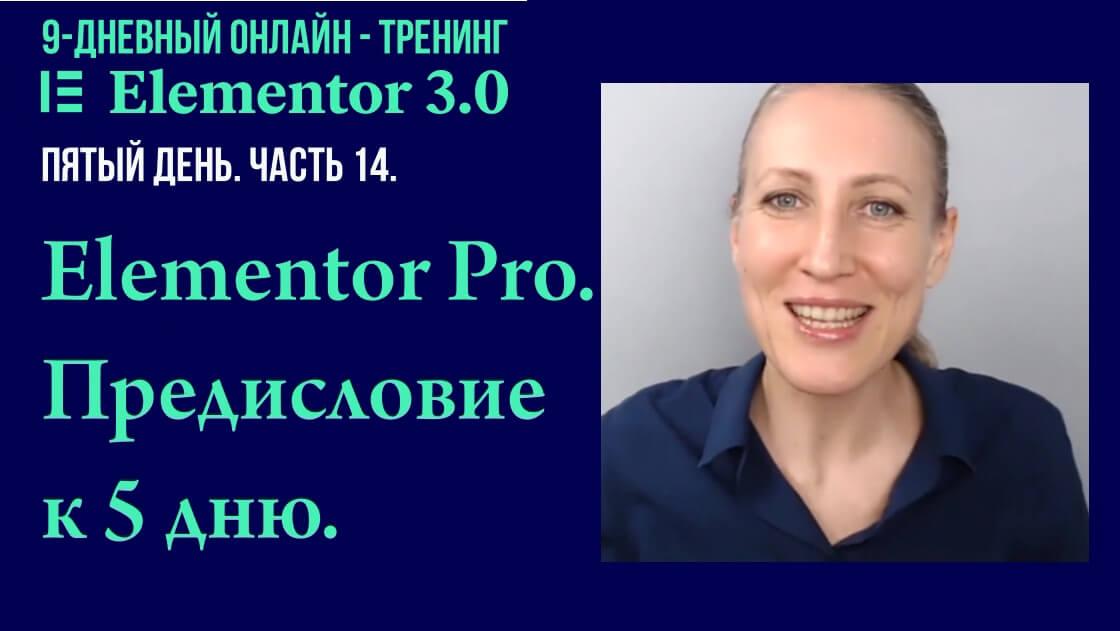 Elementor Pro. Предисловие к пятому дню онлайн - тренинга.